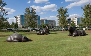 Two large, grey bull statues outside the Ballantyne Corporate Park